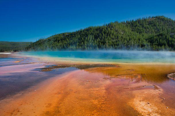 AVA-Yellowstone